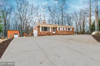 11617 Pine Tree Drive, Fairfax, VA 22033 (#FX9867080) :: Pearson Smith Realty