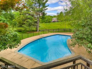800 Follin Farm Lane, Great Falls, VA 22066 (#FX9888473) :: Pearson Smith Realty