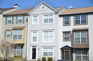 13968 Gunners Place, Centreville, VA 20121 (#FX9891490) :: Pearson Smith Realty