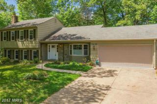 7609 Mulberry Bottom Lane, Springfield, VA 22153 (#FX9927107) :: Pearson Smith Realty