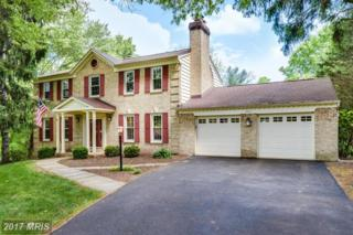 1017 Cup Leaf Holly Court, Great Falls, VA 22066 (#FX9931671) :: Pearson Smith Realty
