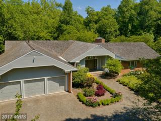 607 Deerfield Pond Court, Great Falls, VA 22066 (#FX9938373) :: Pearson Smith Realty