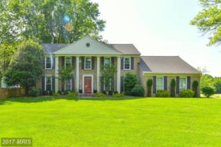 917 Mcmillen Court, Great Falls, VA 22066 (#FX9945709) :: Pearson Smith Realty