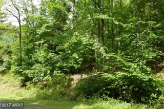 2-LOT Backbone Drive, Oakland, MD 21550 (#GA8455419) :: LoCoMusings