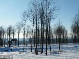 LOT 15 Upper Camp Road, McHenry, MD 21541 (#GA8518563) :: Pearson Smith Realty