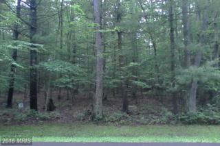 LOT 20 Wood Ridge Road, Swanton, MD 21561 (#GA8660915) :: Pearson Smith Realty
