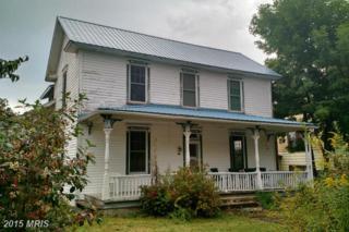310 E Street, Mountain Lake Park, MD 21550 (#GA8706817) :: Pearson Smith Realty