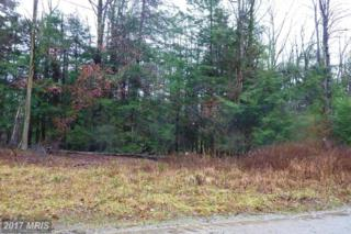 7-LOT Deer Run Road, Oakland, MD 21550 (#GA9537474) :: Pearson Smith Realty