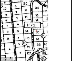119 Elm Drive, Oakland, MD 21550 (#GA9625420) :: LoCoMusings