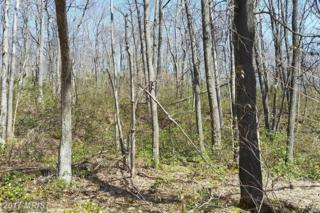 Lot 10 Turkey Knob Road, Oakland, MD 21550 (#GA9629033) :: Pearson Smith Realty