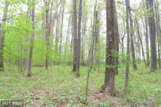Bear Creek Forest, Accident, MD 21520 (#GA9651600) :: Pearson Smith Realty
