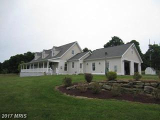 9743 Bittinger Road, Swanton, MD 21561 (#GA9700367) :: Pearson Smith Realty
