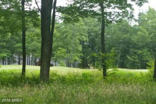 Greenbrier Drive, McHenry, MD 21541 (#GA9710251) :: Pearson Smith Realty