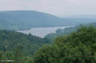 LOT 3 Wisp Mountain Road, McHenry, MD 21541 (#GA9732789) :: Pearson Smith Realty