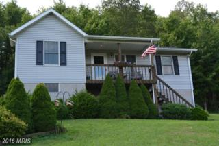 1969 Foster Road, Oakland, MD 21550 (#GA9755799) :: Pearson Smith Realty