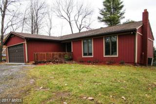 1922 Glendale Road, Swanton, MD 21561 (#GA9819390) :: Pearson Smith Realty