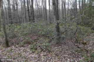 Lot 28 Laurel Drive, Oakland, MD 21550 (#GA9886336) :: Pearson Smith Realty