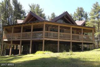 15 High Point Drive, Swanton, MD 21561 (#GA9887459) :: Pearson Smith Realty