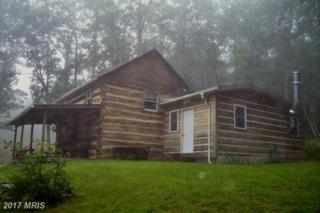 1845 Wratchford Road, Cabins, WV 26855 (#GT9705786) :: Pearson Smith Realty