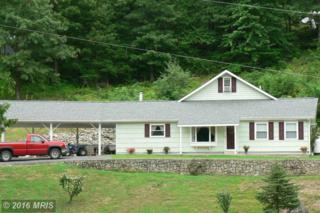 860 Jordan Run Road, Cabins, WV 26855 (#GT9731488) :: Pearson Smith Realty