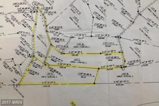Pine Trail, Moorefield, WV 26836 (#HD8408495) :: LoCoMusings