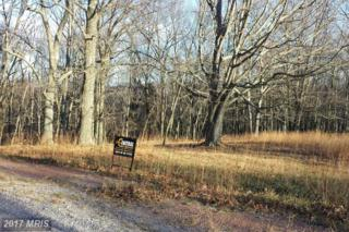 North Ridge Road, Mathias, WV 26812 (#HD9522284) :: Pearson Smith Realty