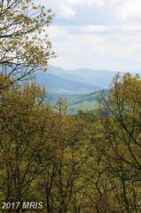 16 Top Of The Mountain Road, Moorefield, WV 26836 (#HD9668677) :: LoCoMusings