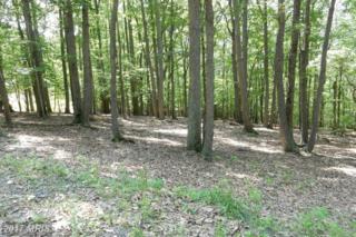 Anderson Ridge, Wardensville, WV 26851 (#HD9681104) :: LoCoMusings