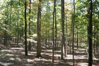 76 Wilson Run Trail, Moorefield, WV 26836 (#HD9685638) :: LoCoMusings