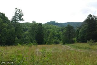 West Brook Road Lot D, Old Fields, WV 26845 (#HD9706039) :: LoCoMusings
