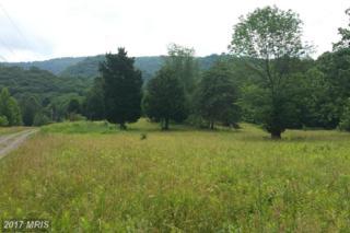 West Brook Road Lot C, Old Fields, WV 26845 (#HD9706046) :: LoCoMusings