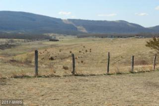 0 Old Fields Road, Old Fields, WV 26845 (#HD9733992) :: LoCoMusings