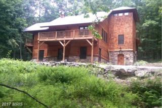 82 Stoney Mountain Road, Mathias, WV 26812 (#HD9802872) :: Pearson Smith Realty