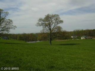 20 Sleepy Meadows, Augusta, WV 26704 (#HS7944027) :: Pearson Smith Realty
