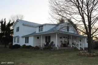 2359 Hoy Road, Augusta, WV 26704 (#HS8303722) :: Pearson Smith Realty