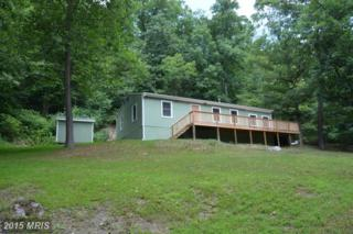709 Old Mill Road, Capon Bridge, WV 26711 (#HS8412320) :: Pearson Smith Realty