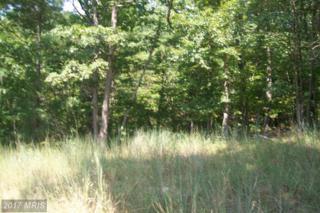 White Oak Trail, Paw Paw, WV 25434 (#HS8729195) :: LoCoMusings