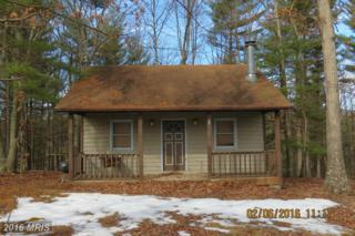 913 Feller Driveway, Levels, WV 25431 (#HS9566376) :: Pearson Smith Realty