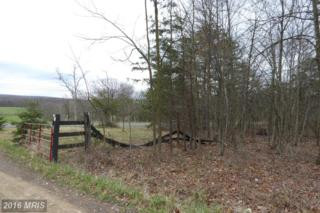 0 Jersey Mountain Road, Points, WV 25437 (#HS9616671) :: Pearson Smith Realty