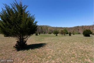 816 River Bend Drive, Bloomery, WV 26817 (#HS9643010) :: Pearson Smith Realty