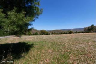 River Bend Road, Bloomery, WV 26817 (#HS9643561) :: Pearson Smith Realty