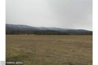 Little Mtn Drive, Romney, WV 26757 (#HS9745049) :: Pearson Smith Realty