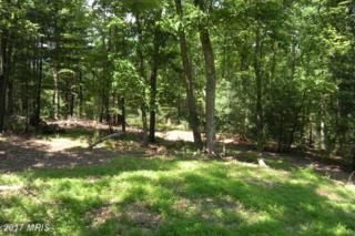 LOT #101 Mossy Oaks Road, Yellow Spring, WV 26865 (#HS9751539) :: LoCoMusings