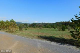 Lot 16 North River Rd, Augusta, WV 26704 (#HS9781081) :: Pearson Smith Realty
