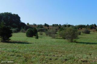 Lot 19 North River Rd, Augusta, WV 26704 (#HS9781097) :: Pearson Smith Realty