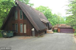 2157 Timberlake Drive, James Creek, PA 16657 (#HU9607110) :: Pearson Smith Realty