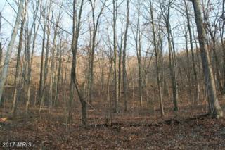 Lot #65 Candlemoss Drive, James Creek, PA 16657 (#HU9654295) :: LoCoMusings