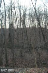 Lot #32 Timberlake Drive, James Creek, PA 16657 (#HU9654297) :: LoCoMusings