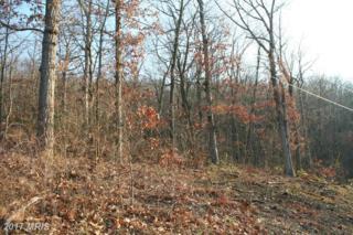 Lot #119 Garrett Way, James Creek, PA 16657 (#HU9654299) :: LoCoMusings