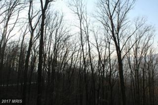 Lot #115 Deep Forest Drive, James Creek, PA 16657 (#HU9654302) :: LoCoMusings